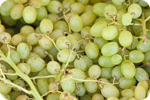 Quite popular and tasty Rhodes product, the grapes, come in many sizes and types, this is the white grape for eating