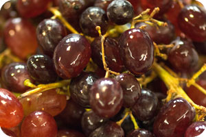 Black (red) grapes, the small variety